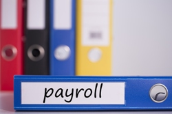 Detroit Metro Payroll services
